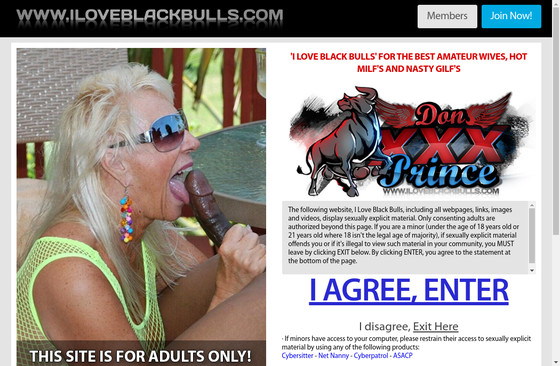 I Love Black Bulls
